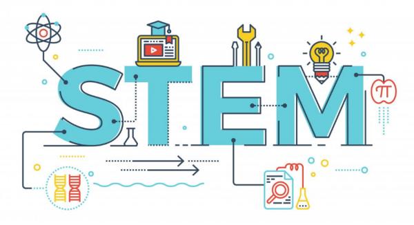 STEM چیست