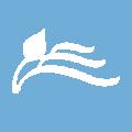 navidesalehin-logo-yasclass